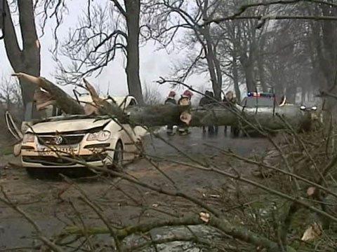 Циклон «Ксавьер» унес жизни пяти поляков