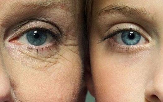 Вечно молодой, вечно… Ученые избавят человечество от старости