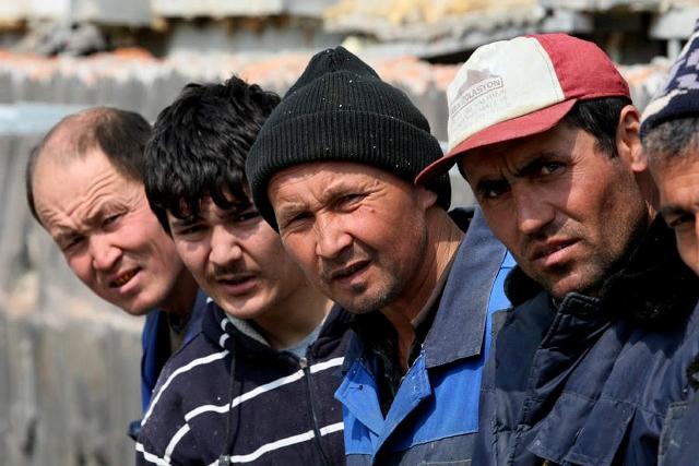 В Курганскую область едут мигранты ни слова не знающие по-русски
