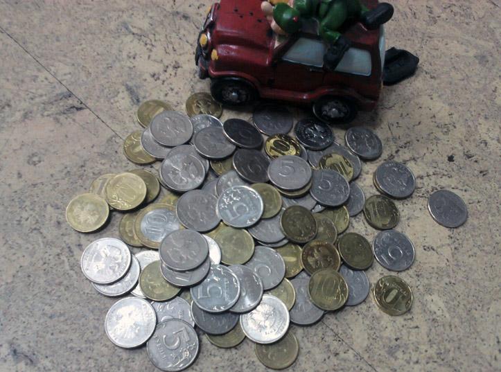 В Волгограде возбуждено уголовное дело за кражу копилки с монетами