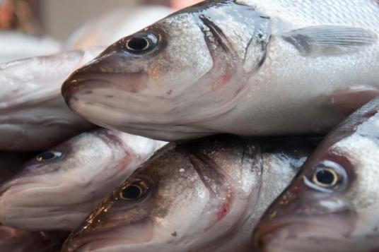 Роспотребнадзор ограничил поставки молочной и рыбной продукции из Эстонии