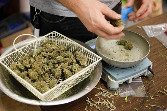 В Пермском крае у наркоторговцев изъяли более полутонны марихуаны и гашиша