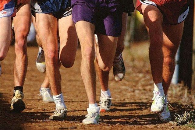 Букмекеров хотят заставить вкладывать средства в развитие спорта