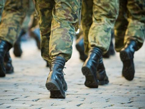 Единая Россия собирается запустить пилотный проект службы студентов вузов в армии