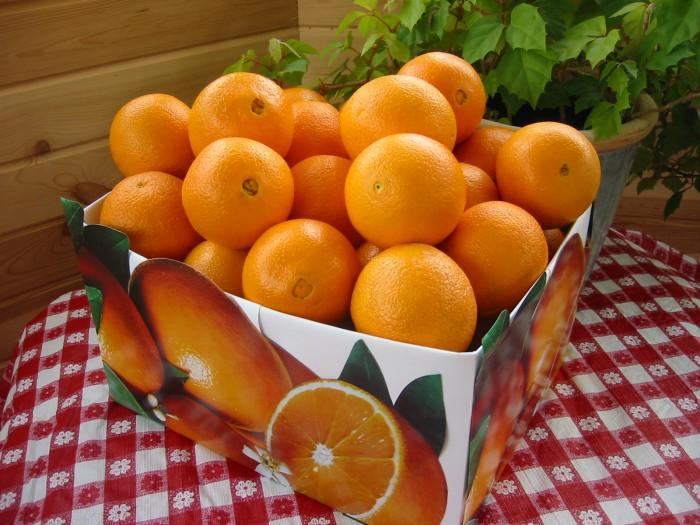 Сирия подарила России 20 тонн апельсинов