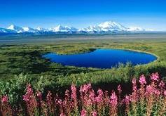 Вопрос об Аляске снят с сайта Белого дома
