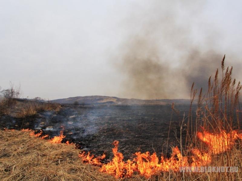 В Усольском районе Приангарья задержали поджигателя травы