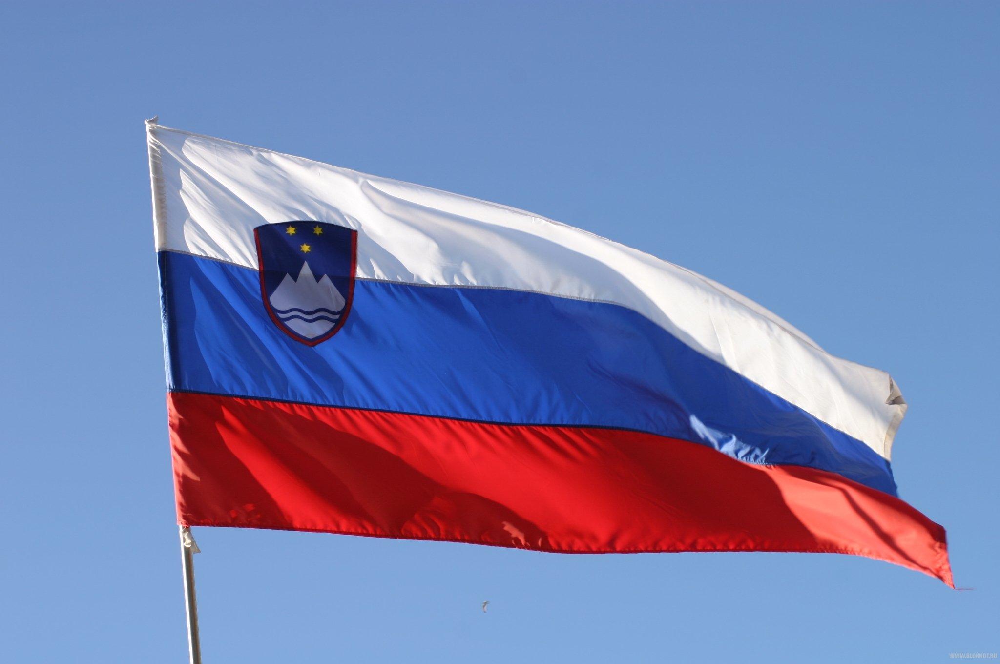 Грузинский чиновник по ошибке сжег флаг Словакии вместо флага России