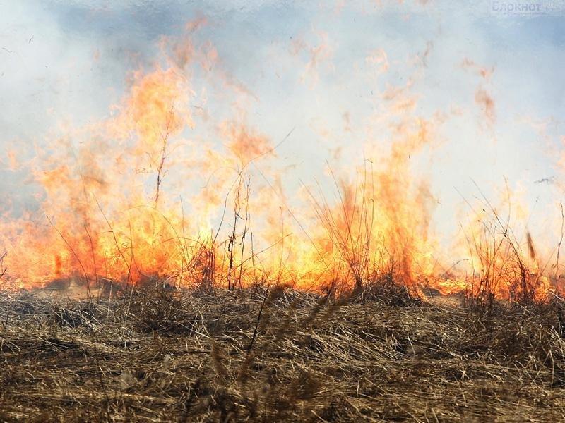 Палы сухой травы стали причиной задымленности в Иркутске