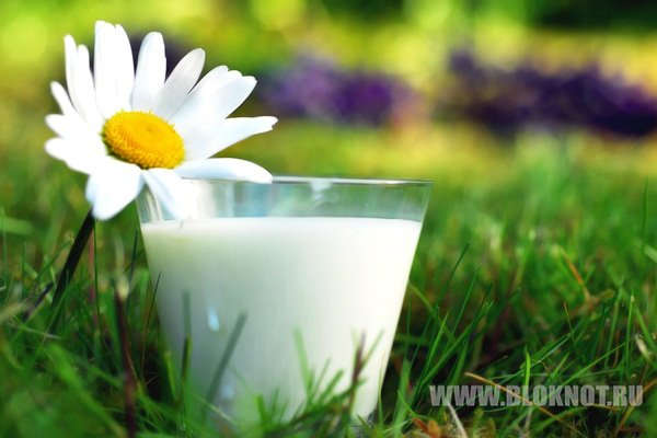 Что каждый родитель должен знать о молоке