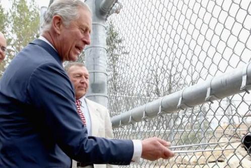 Принц Чарльз специально сравнил Путина с Гитлером, чтобы спровоцировать международный скандал?