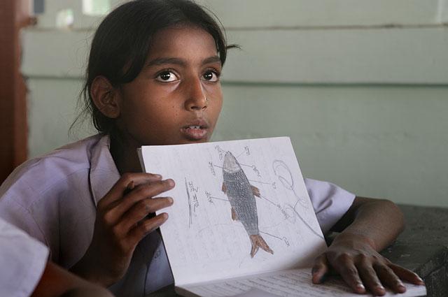 Учеников индийской школы заставляли смотреть порно и есть фекалии