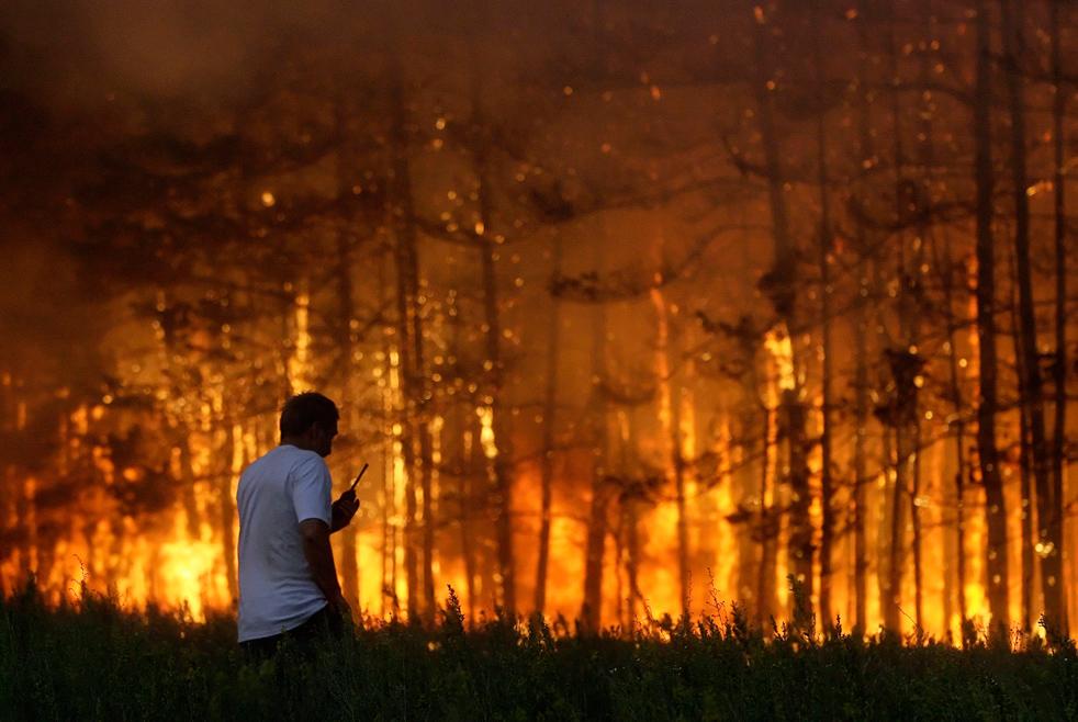 За две недели в Красноярском крае потушено 300 лесных пожаров