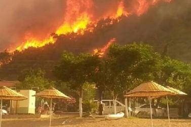 Лесной пожар в Анталье потушен