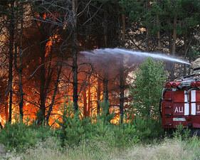 Красноярский губернатор, призвавший не тушить лесные пожары, получил неожиданную поддержку