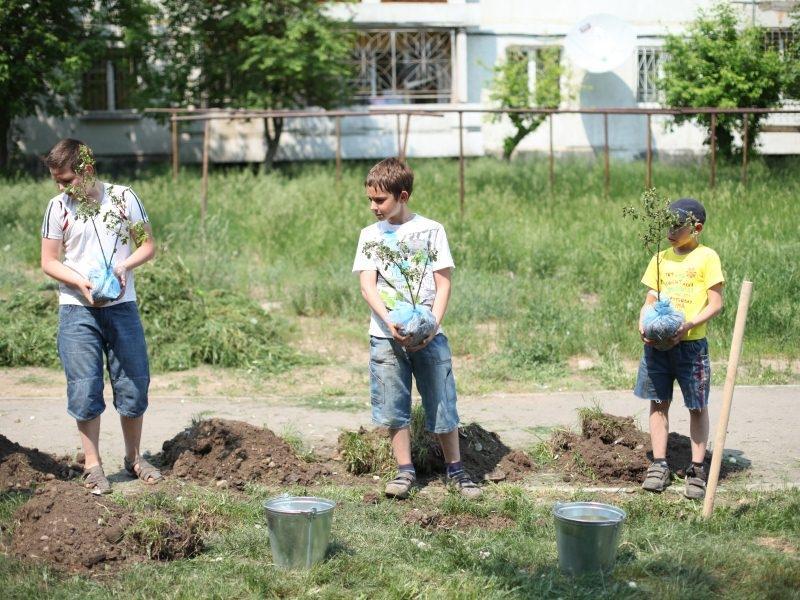 В Иркутске реализуется проект «Любимому городу – новые скверы»