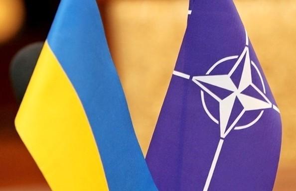 Украина может стать партнером НАТО?