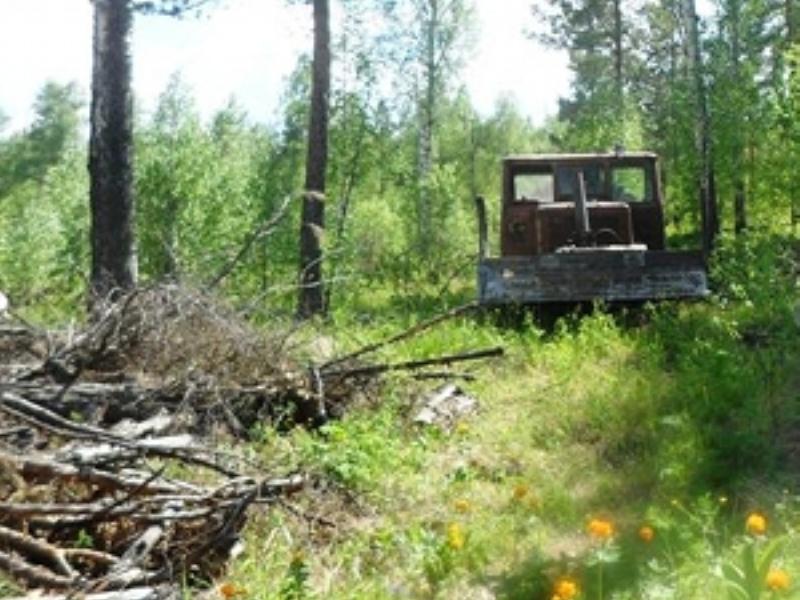 В Приангарье тракторист задавил сторожа лесосеки
