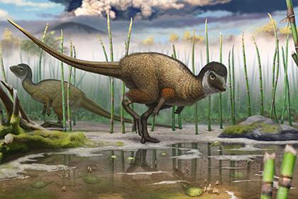 Сенсация – динозавры были покрыты перьями
