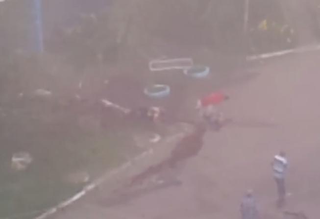 В Сети появилось шокирующее видео жертв карательной операции в Донбассе