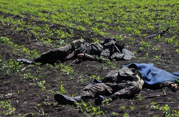 Сколько солдат украинской армии реально погибли с начала объявленной властью войны