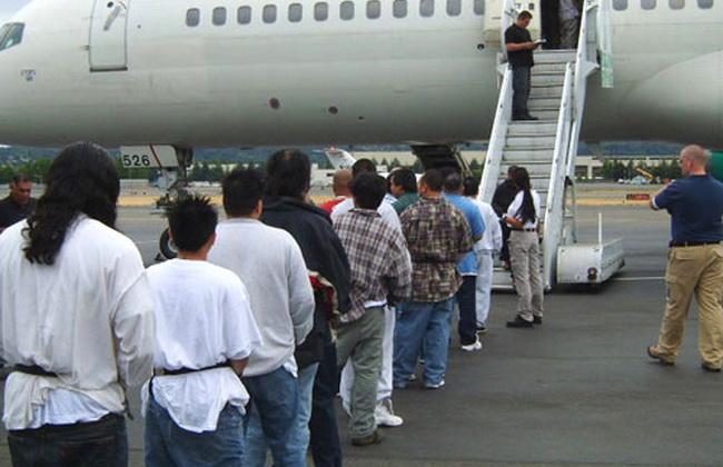 СР предлагает выдворять нарушителей миграционных законов за счет их работодателей