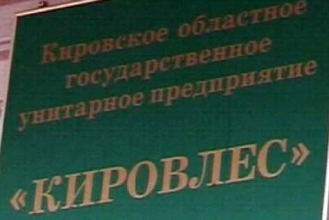 Управляющего Кировлесом подозревают во взятке
