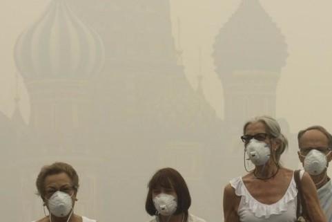 Из-за жары в Тверской области начались торфяные пожары - смог дошел до Москвы