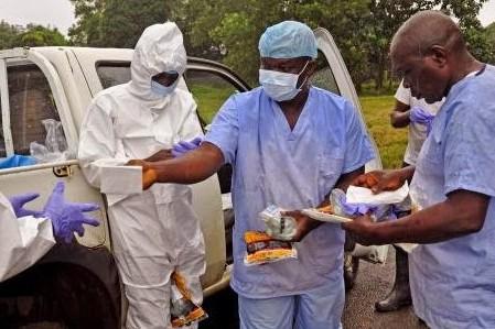 Американский антивирус Эбола оказался неэффективным