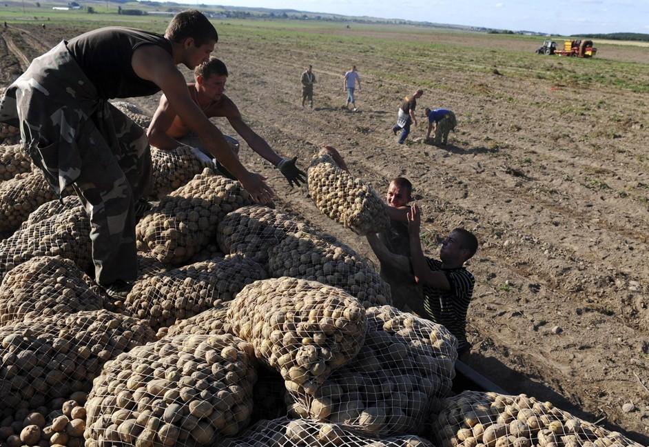 Молдавия пытается жульничать на поставках продукции в Россию