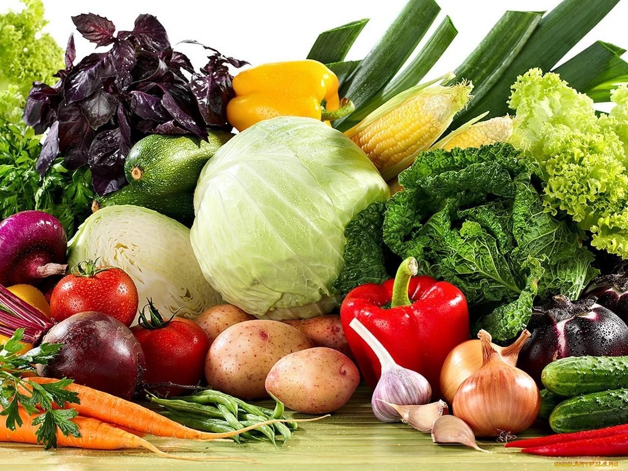 Россия хочет наладить импорт сельхозпродукции из Турции
