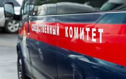 В Подмосковье ищут убийц хозяйки АЗС и ее 12-летней дочери
