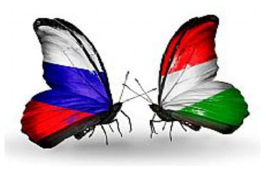 Венгрия мечтает помириться с Россией и ищет союзников в ЕС