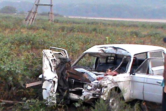В Ставропольском крае водитель легковушки убил лошадь и сам попал в больницу