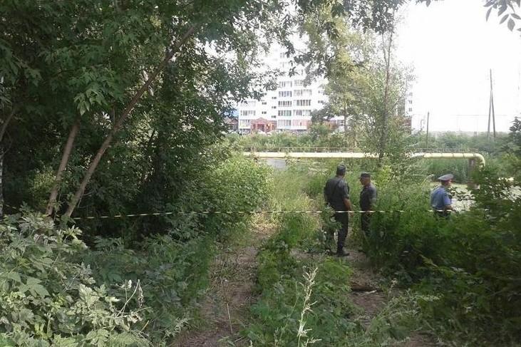 В Томске нашли тело пропавшей девочки Вики Вылегжаниной