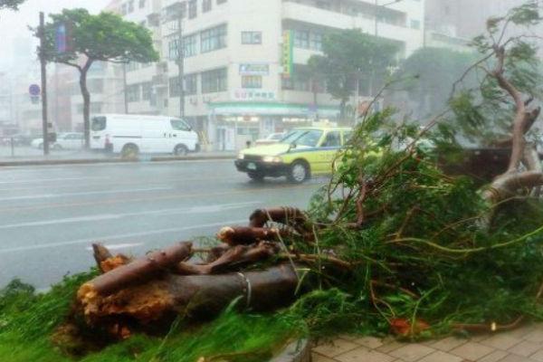 Из-за тайфуна в Японии отменены 620 авиарейсов