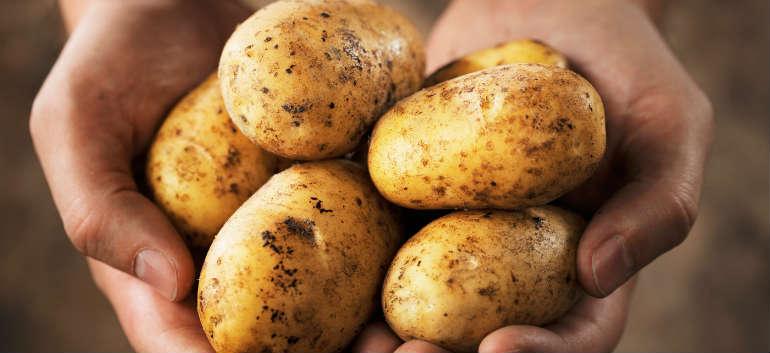 Картофель пророс во влагалище колумбийки