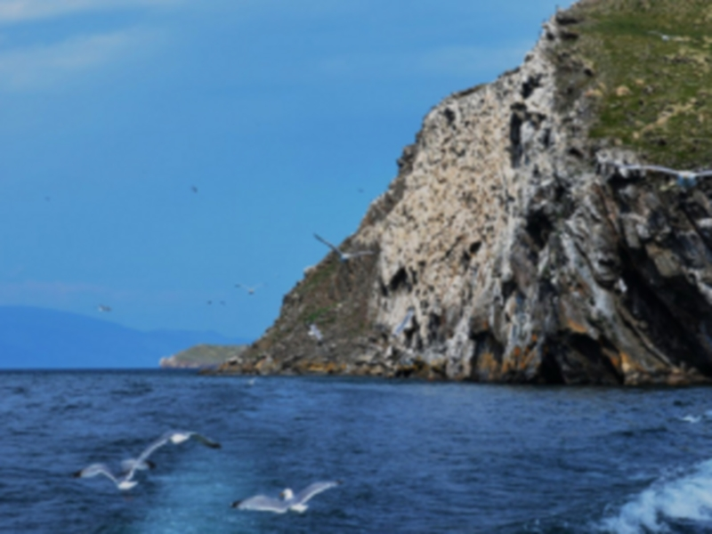 Экологический корабль будет курсировать по Байкалу