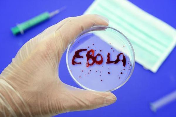 Из-за вируса Эбола в Сербии ввели измерение температуры пассажиров