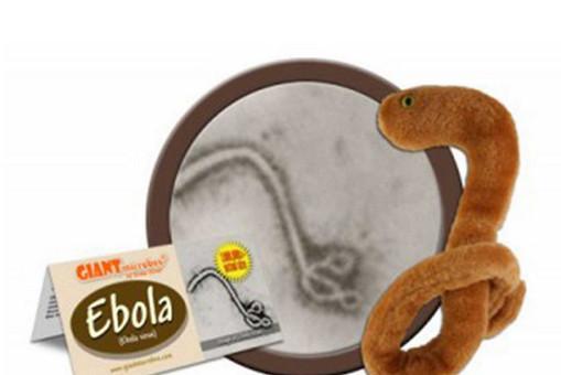 Игрушка в виде вируса Эбола бьет рекорды продаж в США