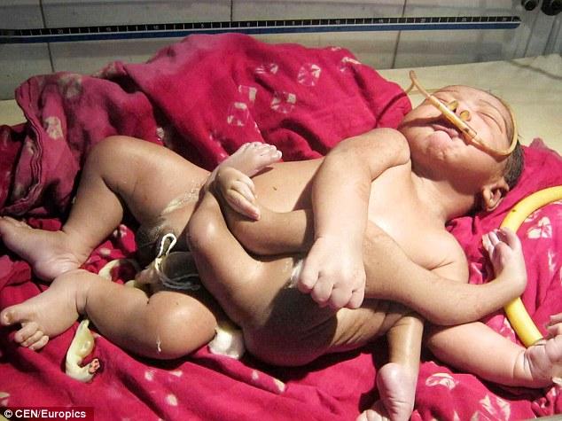 В Индии нашли новорожденного Брахму