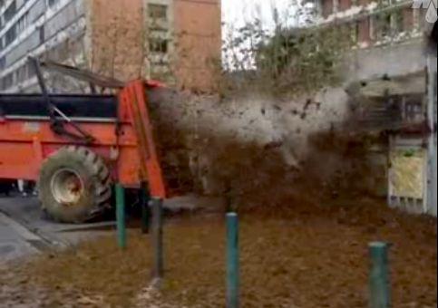 Французские фермеры завалили мэрию навозом за санкции против РФ