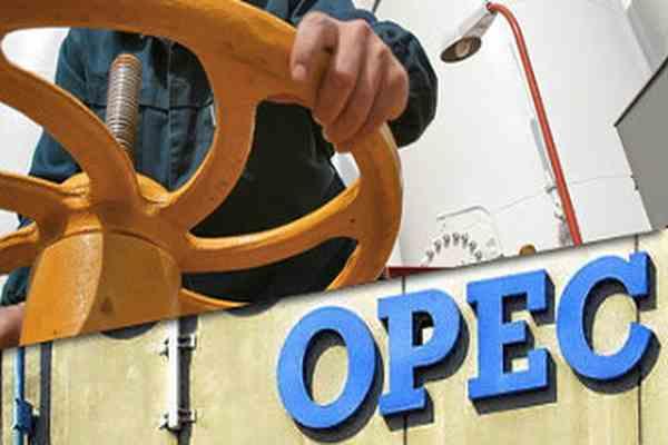 Экспортерам нефти не стоит надеяться на ОПЕК