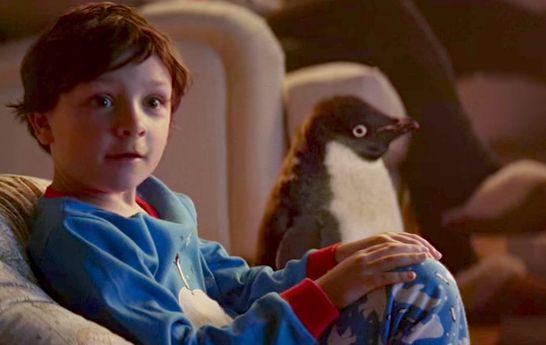 Рождественское видео с пингвином Монти покорило Интернет