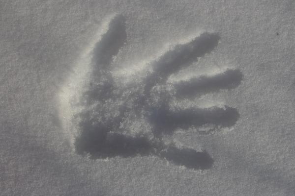 В Забайкалье студент по дороге с дискотеки замерз насмерть