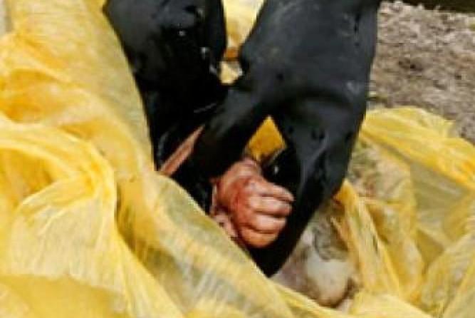 В Москве найден труп младенца в пакете с мусором
