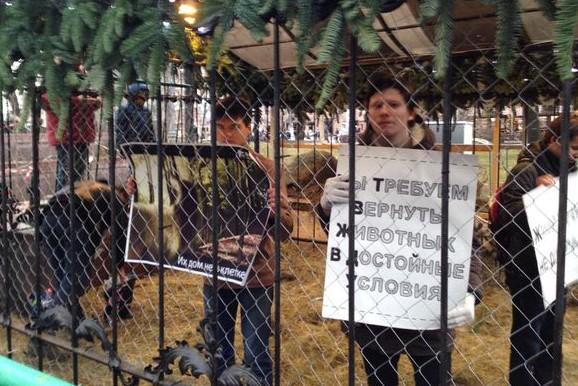 Зоозащитники заперлись в клетке с оленем в центре Москвы