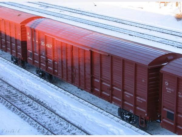 Парень выжил, проехав 2,5 часа под вагоном грузового поезда