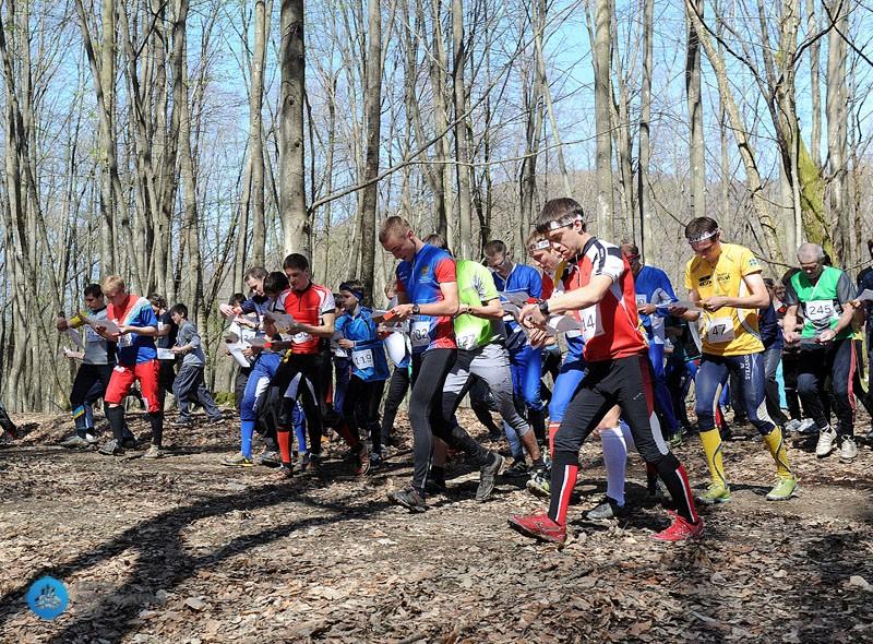 За гибель школьника в лесу Ленобласти ответят организаторы спортсоревнований