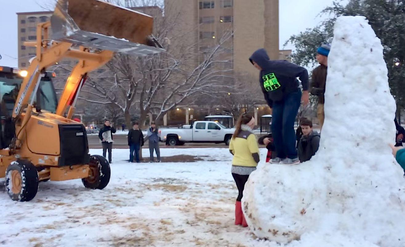 Студенты попытались спасти от сноса трехметровый фаллос из снега